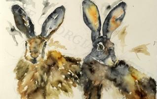 Yvonne Edwards – original paintings